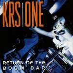 KRS-One: Return Of The Boom Bap, 2 LPs