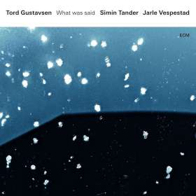 Tord Gustavsen, Simin Tander & Jarle Vespestad: What Was Said (180g), LP