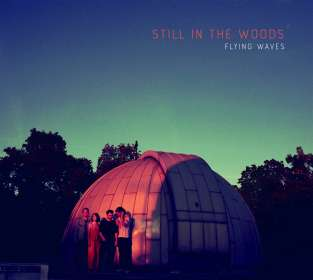 Still In The Woods: Flying Waves, CD