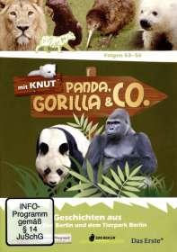 Panda, Gorilla & Co. Vol.6 (Folgen 53-56), DVD