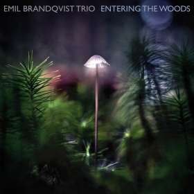 Emil Brandqvist (geb. 1981): Entering The Woods, CD