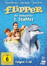 Hollingsworth Morse: Flipper Staffel 1, DVD