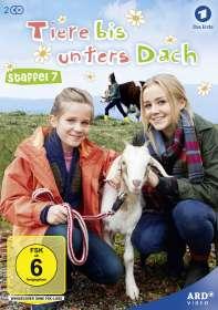 Berno Kürten: Tiere bis unters Dach Staffel 7, DVD