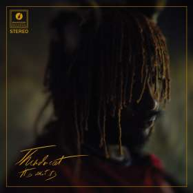 Thundercat: It Is What It Is, CD
