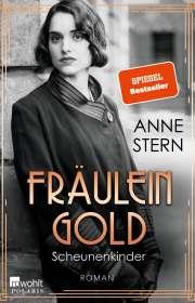 Anne Stern: Fräulein Gold: Scheunenkinder, Buch