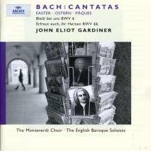 Johann Sebastian Bach (1685-1750): Kantaten BWV 6 & 66, CD