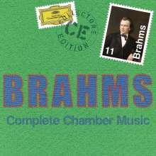Johannes Brahms (1833-1897): Kammermusik (Gesamt-Aufnahme), 11 CDs