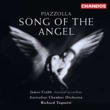 "Astor Piazzolla (1921-1992): Konzert f.Bandoneon,Percussion & Streicher ""Aconcagua"", CD"