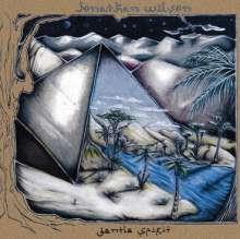 Jonathan Wilson: Gentle Spirit, 2 LPs