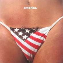 The Black Crowes: Amorica (180g), 2 LPs