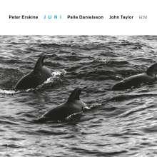 Peter Erskine (geb. 1954): Juni (Touchstones), CD