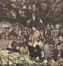 Devendra Banhart: Cripple Crow, 2 LPs