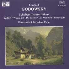 Leopold Godowsky (1870-1938): Klavierwerke Vol.6, CD