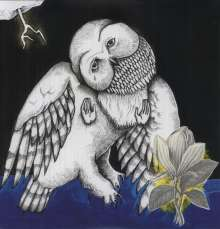 Songs: Ohia: Magnolia Electric Co. (10th-Anniversary-Deluxe-Edition), 2 LPs
