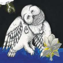 Songs:Ohia: Magnolia Electric Co. (10th Anniversary Deluxe Edition), 2 CDs