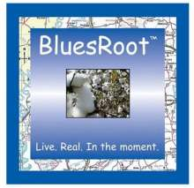 Bluesroot: Live. Real. In The Moment., CD