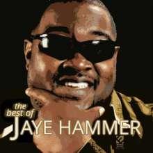 Jaye Hammer: The Best Of Jaye Hammer, CD