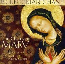 Gloriae Dei Cantores Men's Schola - The Chants of Mary, Super Audio CD