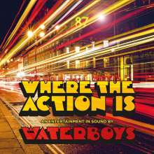 The Waterboys: Where The Action Is (180g), LP