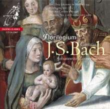 Johann Sebastian Bach (1685-1750): Kantaten BWV 82 & 199, Super Audio CD