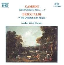 Giulio Briccialdi (1818-1881): Bläserquintett op.124, CD