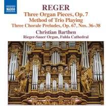 Max Reger (1873-1916): Sämtliche Orgelwerke Vol.16, CD