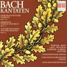 Johann Sebastian Bach (1685-1750): Kantaten BWV 26,173,173a, CD