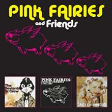Pink Fairies: Pink Fairies And Friends, 3 CDs