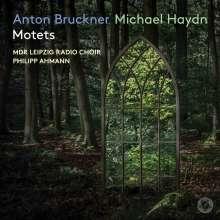Michael Haydn (1737-1806): Motetten, Super Audio CD
