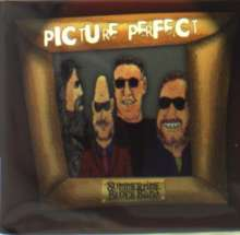 Summertime Blues Band: Picture Perfect, CD