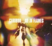 Caribou: Up In Flames (LP + CD), 1 LP und 1 CD
