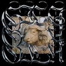 "Gila: Trench Tones, Single 12"""