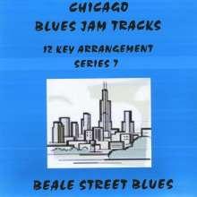 Matthews & Maz: Chicago Blues Jam Tracks Series 7, CD