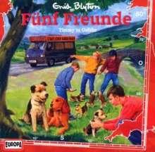 Fünf Freunde (Folge 050) - Timmy in Gefahr, CD