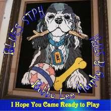 Bobby Lee Murphy: Blues Stph, CD
