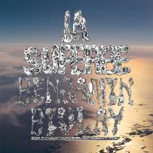 Benjamin Biolay: La Superbe, 2 CDs
