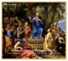Johann Sebastian Bach (1685-1750): Kantaten BWV 22,75,127, CD