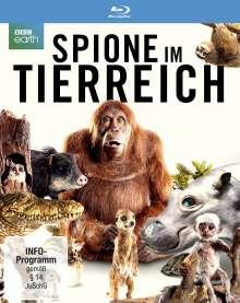 Spione im Tierreich (Blu-ray), 2 Blu-ray Discs