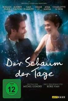 Der Schaum der Tage, DVD