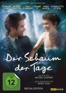 Der Schaum der Tage, 2 DVDs