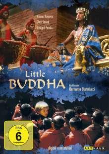 Little Buddha, DVD