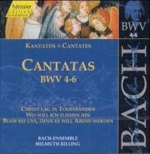 Johann Sebastian Bach (1685-1750): Die vollständige Bach-Edition Vol.2 (Kantaten BWV 4-6), CD