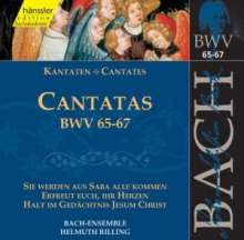 Johann Sebastian Bach (1685-1750): Die vollständige Bach-Edition Vol.21 (Kantaten BWV 65-67), CD
