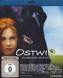 Ostwind (Blu-ray), Blu-ray Disc