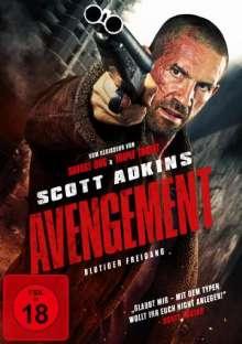 Avengement, DVD