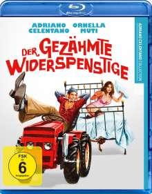 Der gezähmte Widerspenstige (Blu-ray), Blu-ray Disc