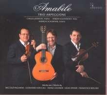 Trio Arpeggione - Amabile, CD