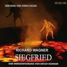 Richard Wagner: Siegfried - Eine Werkeinführung, 2 CDs