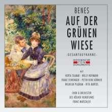 Jara Benes (1897-1949): Auf der grünen Wiese, 2 CDs