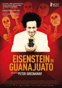 Eisenstein in Guanajuato, DVD